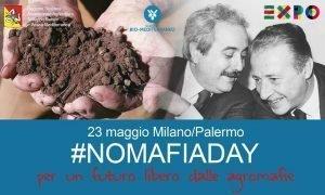 no mafia day 1
